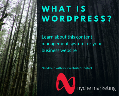 What is wordpress - from nyche marketing